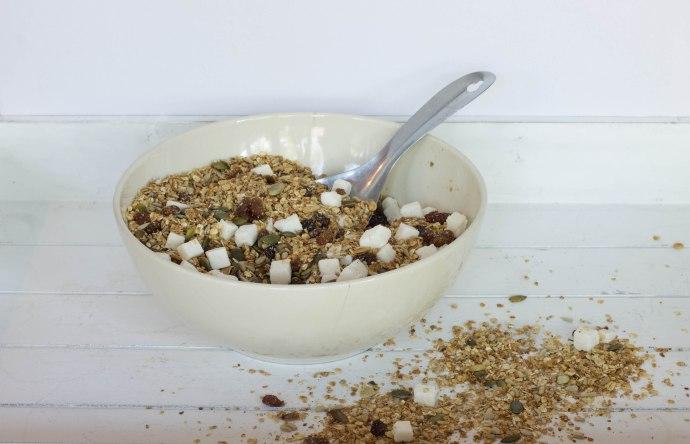 granola (1 of 1)